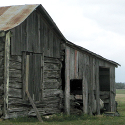 Cabin with additional shed